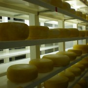 Cada Dia Cheese Farm